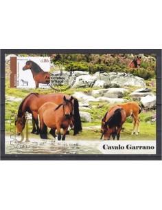 Portugal 2019 Raças Autóctones 3.º grupo Máximo Cavalo Sorraia Chevaux horse Pferd caballo
